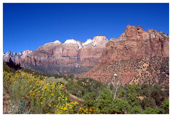 Zion Overview: